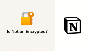 Is Notion Encrypted? Everything You Need To Know