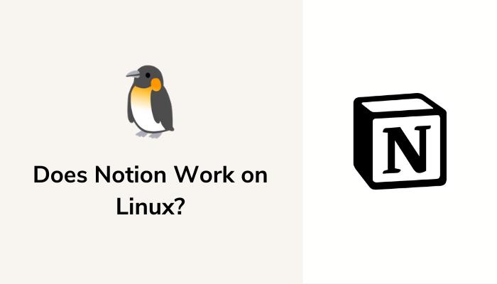Работает ли Notion в Linux?  Все, что тебе нужно знать