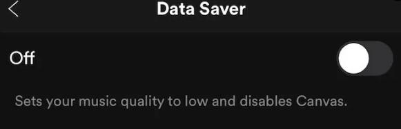 Warum pausiert Spotify immer wieder?     Repariere es